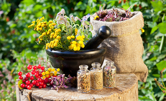 Herbal Medicine Brisbane - Herbal Treatment Clinic Brisbane